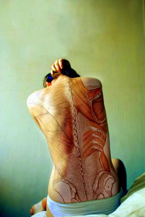 musculos Alaquàs Fisioterapia