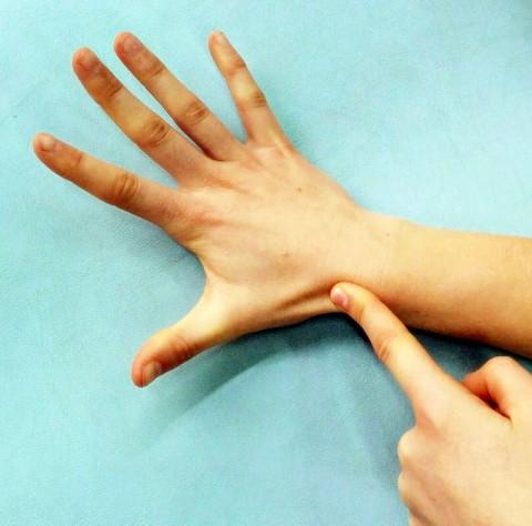 fractura escafoides osteon fisioterapia alaquas